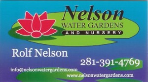 Nelson Water Gardens and Nursery